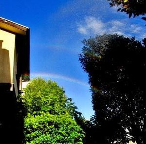 庭に散水したら虹が出た
