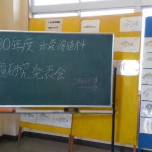 平成30年度水産増殖科課題研究発表会  【水産増殖科】