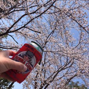 ミニミニ花見@けやき台公園(守谷市)