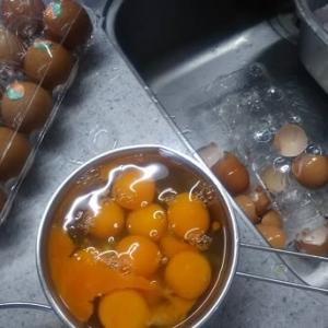 卵10個無事で10個破損
