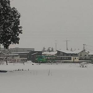 この冬から我が家の除雪は除雪機に変わった。