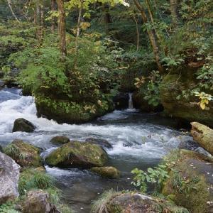 東北旅行 4 奥入瀬渓流