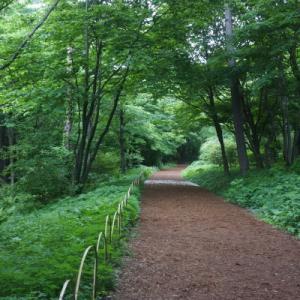 赤城自然園散策