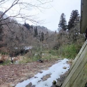 雪国返上の春。