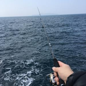 2019年初釣り