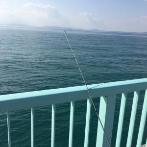 釣り日和そして