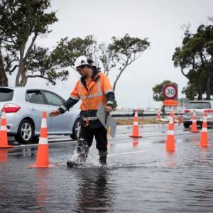 Auckland、2019年10月15日8時の天気は