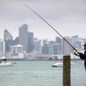 Auckland、2020年1月24日8時の天気は