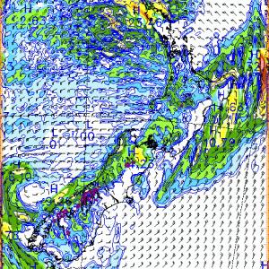 Auckland、2020年7月6日8時の天気は