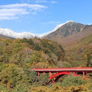 八ヶ岳の冠雪と赤い橋の紅葉