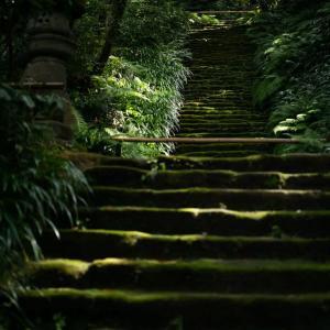 神奈川県鎌倉市大町妙法寺 風景写真 / Sony α7RⅢ