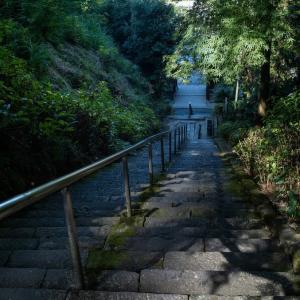 埼玉県東松山市岩殿正法寺/ Leica M10-R