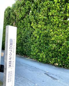 沖縄で GET BEER !! - 3 -