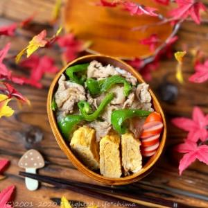 豚肉とピーマンの生姜炒め~お弁当とおうちランチ