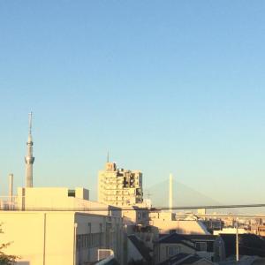 秋晴れの朝ですね(^o^)(^o^)