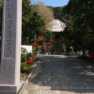 還来寺のまわりの彼岸花