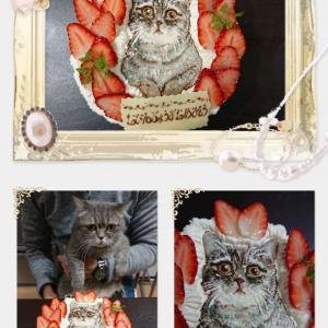 BIRTHDAY cake  ~Patisserie Laneige~
