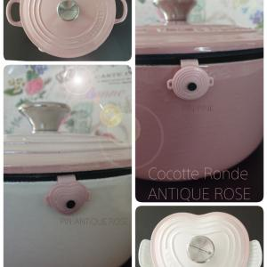 My LE CREUSET  ~Pot only~