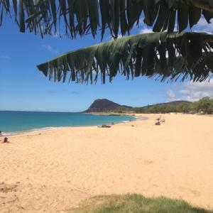 ハワイで瞑想