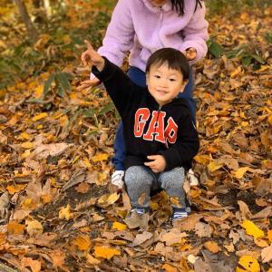 紅葉と秋の月釜、茶会