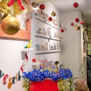 川越店「クリスマスにゃんぼ!宝くじ2019」当選番号の発表です
