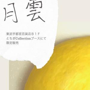 ◆◇限定販売 日光糀(はな)パンデビュー!/日光珈琲西参道様◆◇