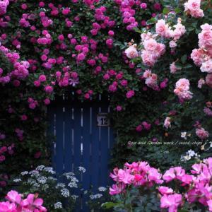 バラを楽しむ庭づくり、春の風景。7つの空間より #70