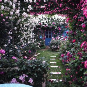 バラを楽しむ庭づくり、春の風景。7つの空間より #79