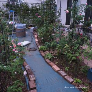 バラと庭の管理作業(下草の手入れ)・杉並区のガーデンより