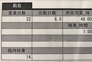 出勤日数6.0の給与支給明細書(;^_^A