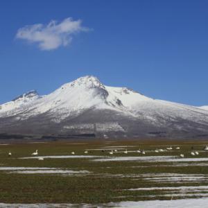 駒ヶ岳と野鳥。ツルさんも^^
