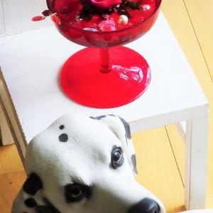 レッドカップの赤い薔薇