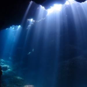 天使のウインク~青い珊瑚礁@東海岸