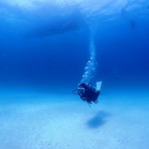 通常どおり出航で快適ダイビング