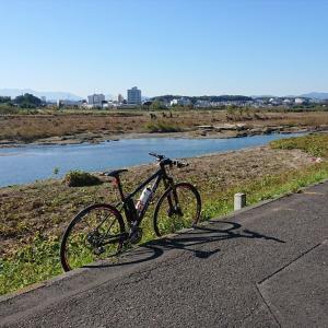 多摩サイ(台風19ごうのあと初めて
