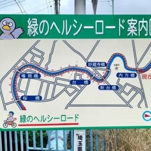 見沼代用水東縁 台橋~大崎公園