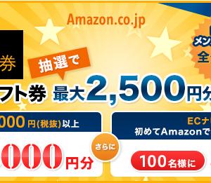 ECナビ Amazonでお買い物をするとAmazonギフト券2,000円分、500円分が当たります