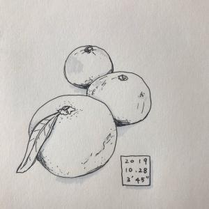 ●20191028-1101〜絵筋トレ部まとめ*
