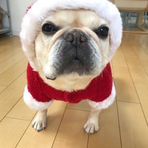 クリスマスイヴは