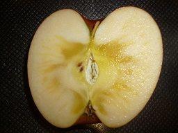 りんご!捨てたもの!