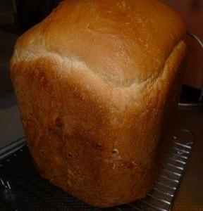 早朝のゴミ拾い!食パン!