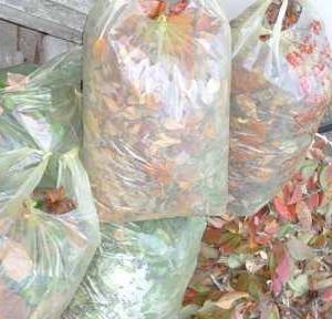 ゴミの山!旬の野菜のいただきもの!