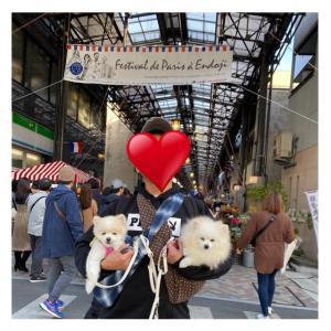 円頓寺商店街★パリ祭に行って来た♪