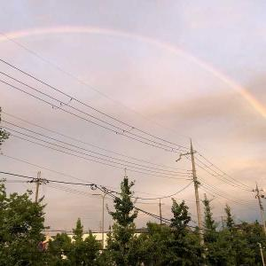 ダブルレインボー虹に願いを✨
