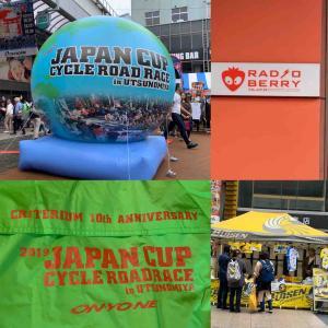 #ジャパンカップ審判 #落車 #自転車の風はすごい