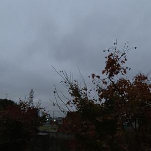 #一眼レフ #那須カメラ #優しい雨 #いちご通り