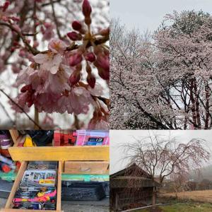 #令和2年度 #那須の滝桜 #幅員 #舗装面積計算