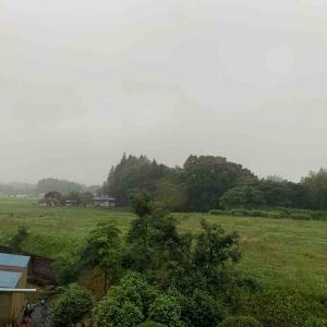 #学ぶ時間 #雨が降る前に #写真 #基準点 #半日
