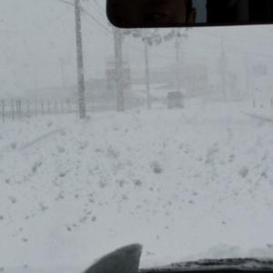 それもこれも雪のせい
