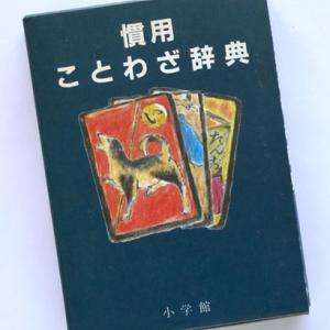 「慣用ことわざ辞典」、「ど忘れことわざ事典」、「イラストことわざ辞典」